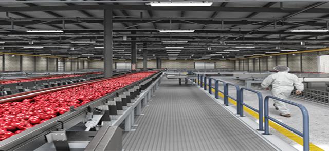 Food Processing/ Storage