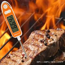 Elitech WT-10 Meat Digital Thermometer 1