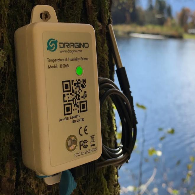 Dragino LHT65 LoRaWAN Temperature & Humidity sensor