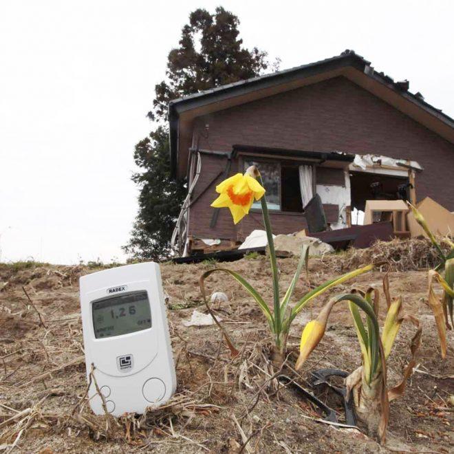 RADEX RD1706 Geiger Counter